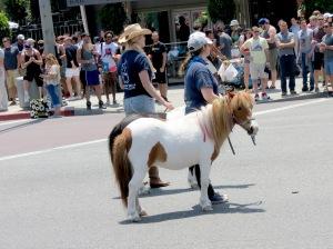 Pony!!!!